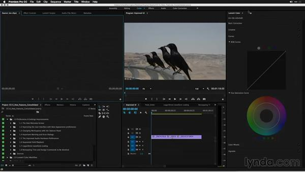 Changing workspaces with the Options panel: Premiere Pro: 2015 Creative Cloud Updates