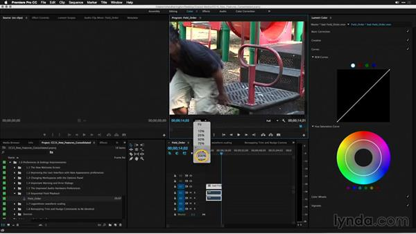 Sequential field playback: Premiere Pro: 2015 Creative Cloud Updates