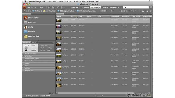 Setting up metadata: Photoshop CS4 for Photographers