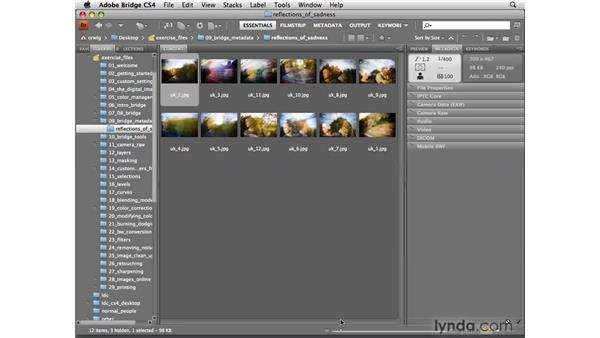 Customizing the workspace for metadata: Photoshop CS4 for Photographers
