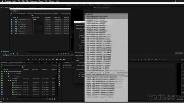Working with complex multicamera sources: Premiere Pro: 2015 Creative Cloud Updates
