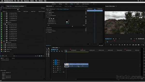 Search bin improvements: Premiere Pro: 2015 Creative Cloud Updates