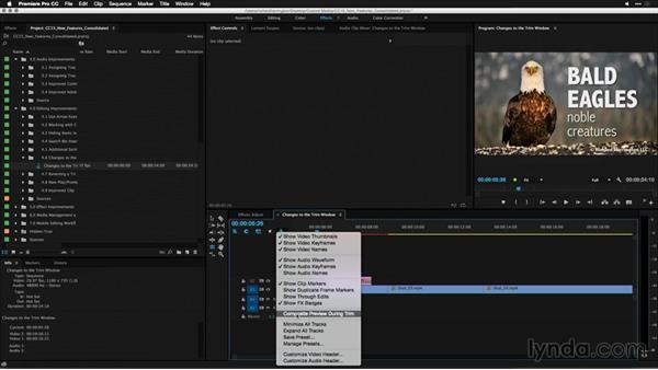 Showing composite preview when trimming: Premiere Pro: 2015 Creative Cloud Updates