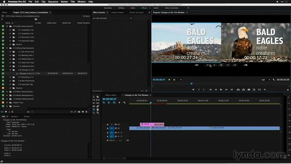 Reverting a trim session: Premiere Pro: 2015 Creative Cloud Updates