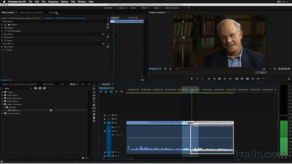 Using Morph Cut: Premiere Pro: 2015 Creative Cloud Updates