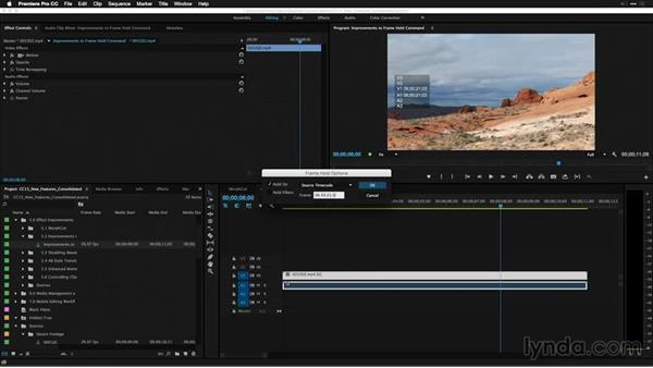 Improvements to Frame Hold command: Premiere Pro: 2015 Creative Cloud Updates