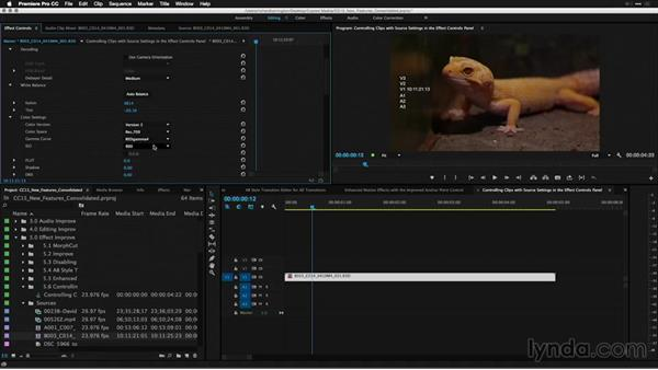 Controlling clips with source settings in the Effect Controls panel: Premiere Pro: 2015 Creative Cloud Updates