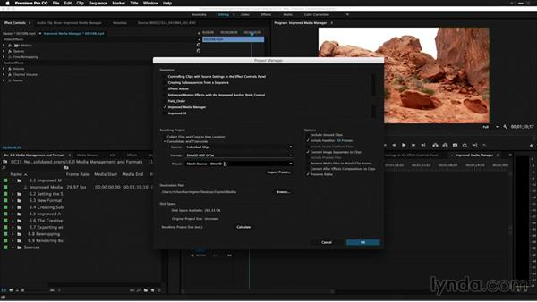 Improved media manager: Premiere Pro: 2015 Creative Cloud Updates