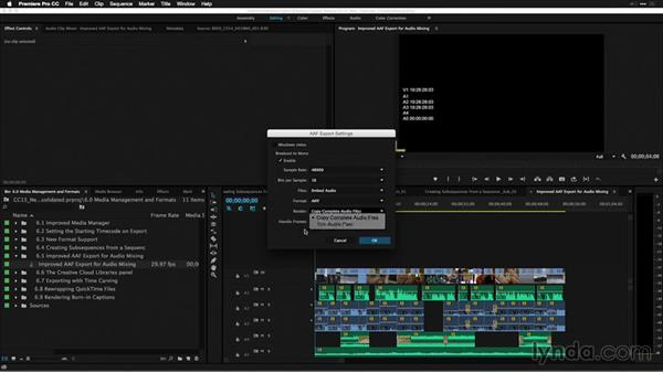 Improved AAF export for audio mixing: Premiere Pro: 2015 Creative Cloud Updates