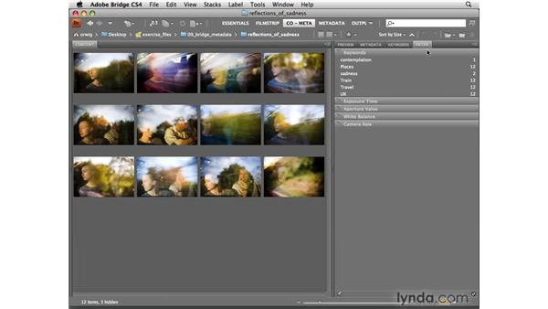 Filtering images based on metadata: Photoshop CS4 for Photographers