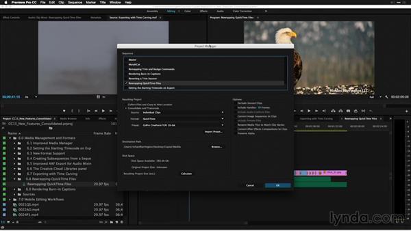 Rewrapping QuickTime files: Premiere Pro: 2015 Creative Cloud Updates