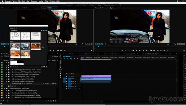 Applying LUTs created with Adobe Hue: Premiere Pro: 2015 Creative Cloud Updates