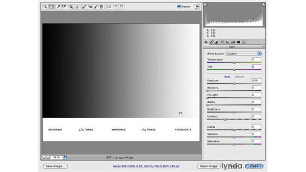 The Camera Raw interface and essential controls: Photoshop CS4 for Photographers