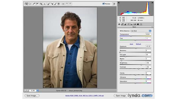 Crop, Rotate, and Vignette: Photoshop CS4 for Photographers
