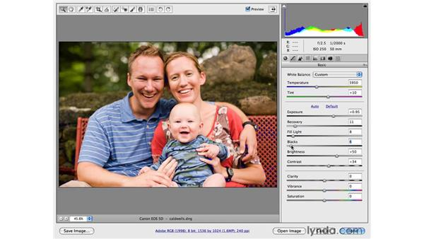 Improving color and tone : Photoshop CS4 for Photographers