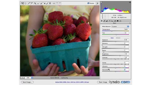 Saturation vs. Vibrance: Photoshop CS4 for Photographers