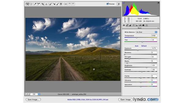 Converting an image to black and white: Photoshop CS4 for Photographers