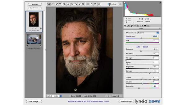 Working with tone subjectively: Photoshop CS4 for Photographers