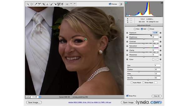 Using the Adjustment Brush: Photoshop CS4 for Photographers