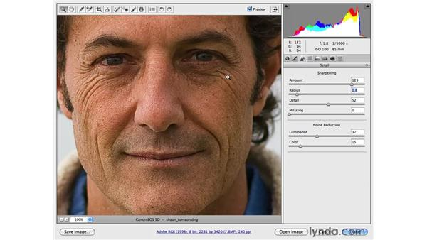 Sharpening and noise reduction: Photoshop CS4 for Photographers