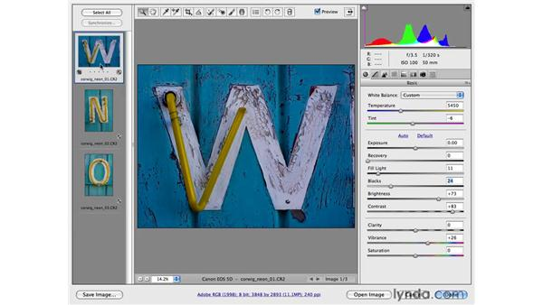 Working with multiple images: Photoshop CS4 for Photographers