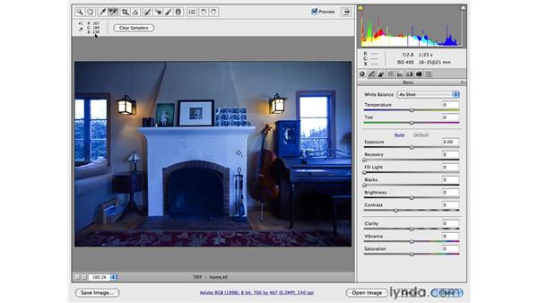 Correcting color with eyedroppers: Photoshop CS4 for Photographers