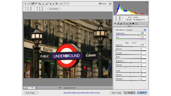 Color correction with Camera Raw: Photoshop CS4 for Photographers
