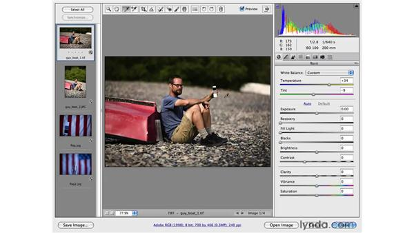 Performing easier color correction with a color chart: Photoshop CS4 for Photographers