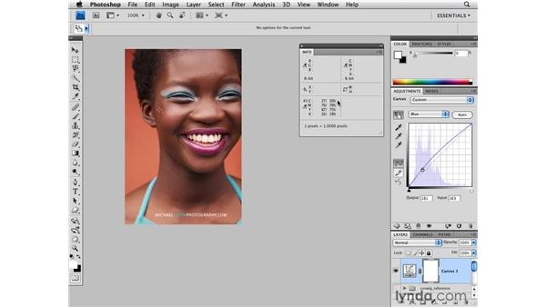 Color correction: Dark skin tone: Photoshop CS4 for Photographers