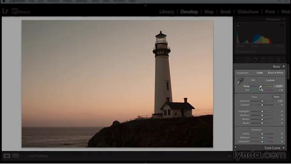 Welcome: Working with Raw-Format Photos in Lightroom and Photoshop