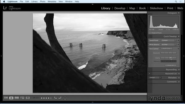 Setting up your files in Lightroom: Working with Raw-Format Photos in Lightroom and Photoshop