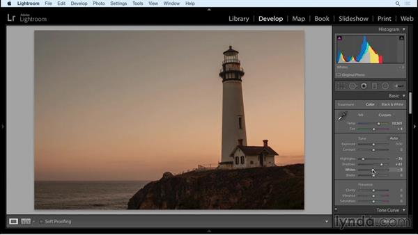 The Basic panel and the tone curve: Working with Raw-Format Photos in Lightroom and Photoshop