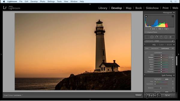 Color, black and white, and toning: Working with Raw-Format Photos in Lightroom and Photoshop