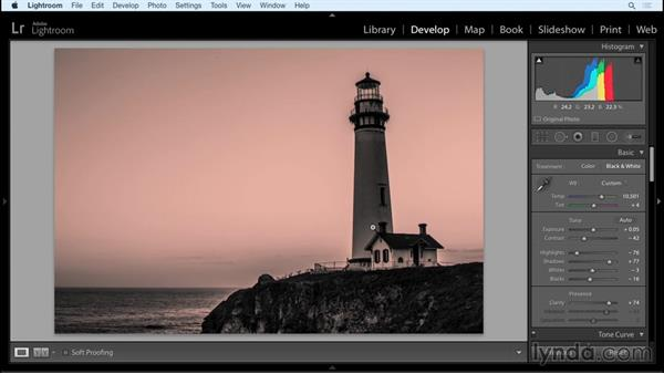 Tools: Working with Raw-Format Photosin Lightroom and Photoshop