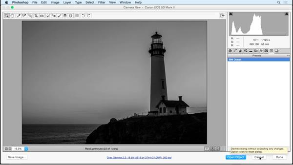 Multiple files and presets: Working with Raw-Format Photosin Lightroom and Photoshop