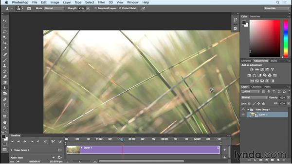 Video in ACR: Working with Raw-Format Photos in Lightroom and Photoshop