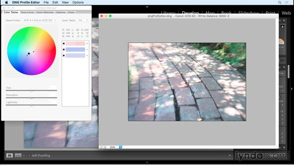 DNG Profile Editor: Working with Raw-Format Photosin Lightroom and Photoshop