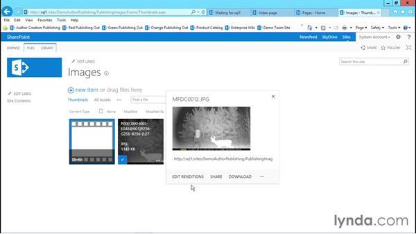 Utilizing image renditions: Publishing Sites with SharePoint 2013
