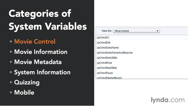 Types of variables: Captivate 8 Advanced Techniques