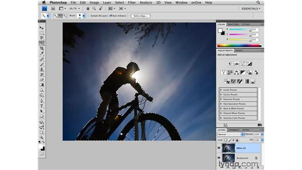 Advanced noise reduction with the Dfine plugin: Photoshop CS4 for Photographers