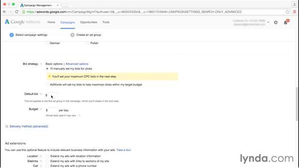 Deciding on bid settings: Google AdWords Essential Training