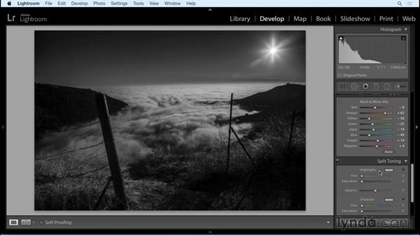 Black-and-white mixing and adding tone : Black and White with Lightroom and Photoshop