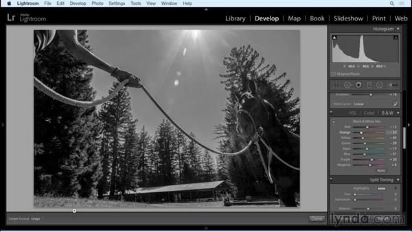Workflow: Black and White with Lightroom and Photoshop