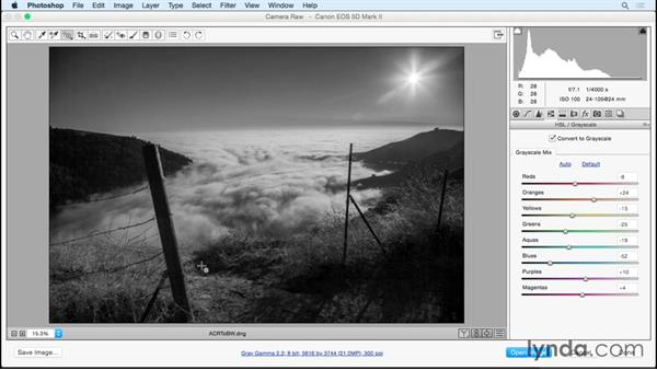 Camera Raw and Smart Filters: Black and White with Lightroom and Photoshop