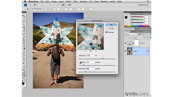 Using the Unsharpen Mask filter: Photoshop CS4 for Photographers
