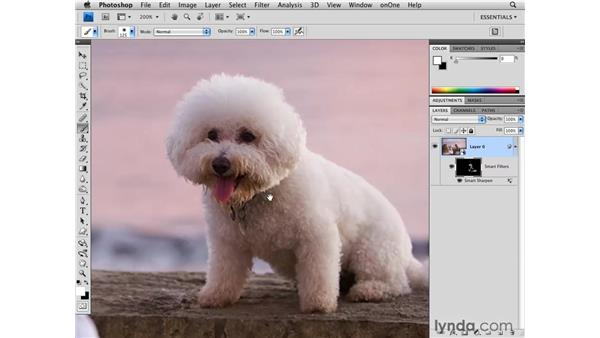 Sharpening and tone: Photoshop CS4 for Photographers