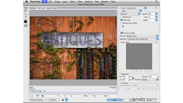 The Save for Web dialog: Photoshop CS4 for Photographers