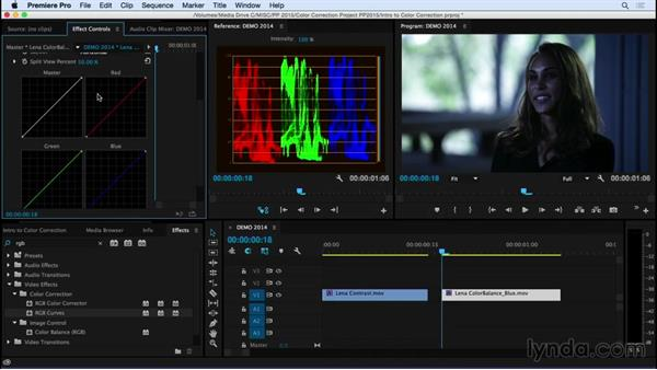 A very important note for Premiere Pro users: Introduction to Video Color Correction