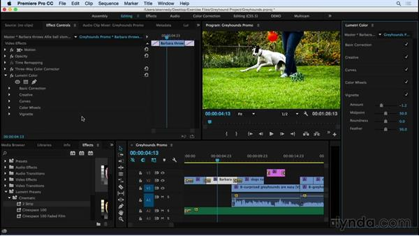 What's new in Premiere Pro CC? (June 2015): Premiere Pro CC Essential Training (2015)