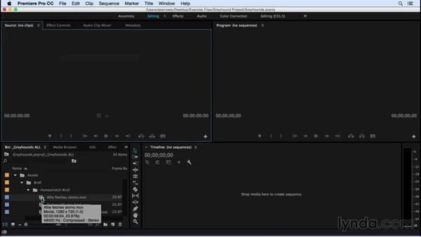 Taking a tour of the Premiere Pro interface: Premiere Pro CC Essential Training (2015)